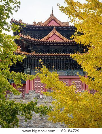 Beijing, China - Oct 30, 2016: Jiaolou Tower framed by yellow and green biloba Gingko leaves. View from outside of Forbidden City (Gu Gong, Palace Museum) wall on Donghuamen Road.