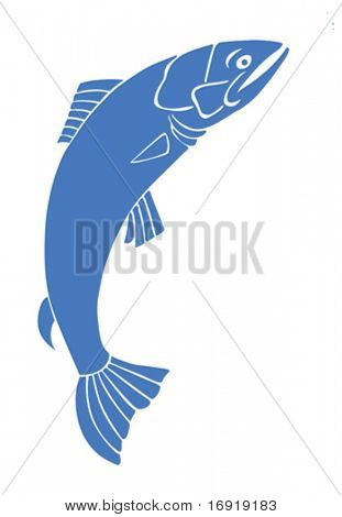vector silhouette salmon on white background