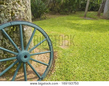 Wooden wagon wheel in the garden - texture