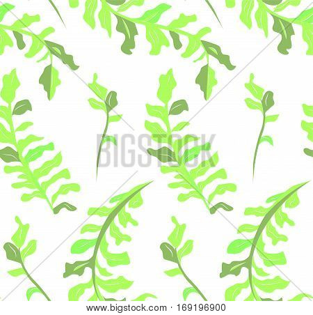 Leaf summer plants seamless pattern. Vector top view closeup horizontal green greenery trendy color beautiful gorgeous herbal botanical plant leaves nature illustration isolated on white background.
