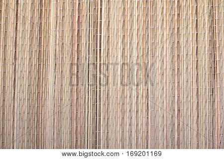 Dried grass mat texture for background, copy space