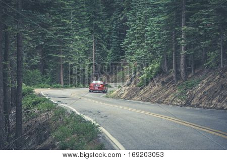 Yosemite, California, USA - June 18, 2014: Ford Mustang on a winding road in Yosemite National Park.