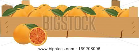 lood orange woobox full of bd lood orange woobox full of bd