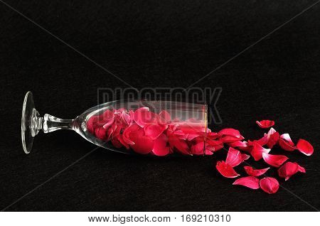 A champagne glass filled with rose petals