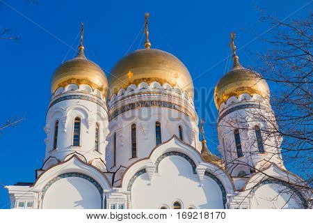 Golden domes of the Church of Winter Russia