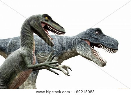 Side view of two angry dinosaurs isolated on white