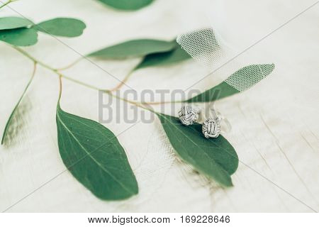 Trendy cufflinks on fabric and green leaves