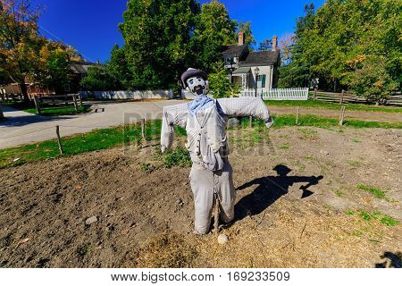 gorgeous amazing mystique view of scarecrow and his shadow friend, standing in farm garden and get ready for Halloween party