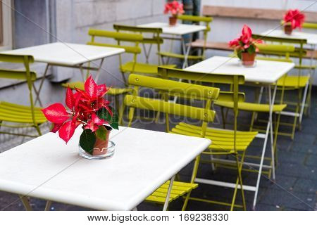 Tables, Chairs And Flowes At Outdoor Cafeteria