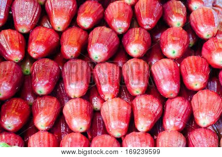 Rose apples or sell print market chomphu
