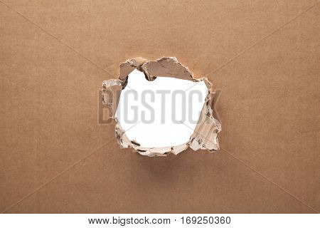 Ripped hole in cardboard on white background with clipping path