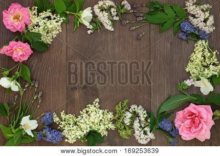 Natural alternative medicine selection with dried and fresh flowers and herbs forming a border on oak background.