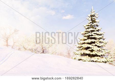 Winter forest after a snow storm blizzard. Sunny frosty january. 3D illustration