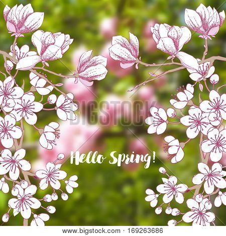 Background with sakura and magnolia. Hand drawn spring trees. Vector illustration with cherry blossoms.