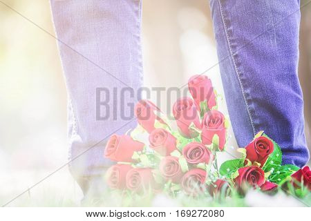 Red Rose flowers Valentine's Day concept in Love.