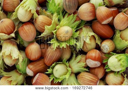 the background of a hazelnuts in shell