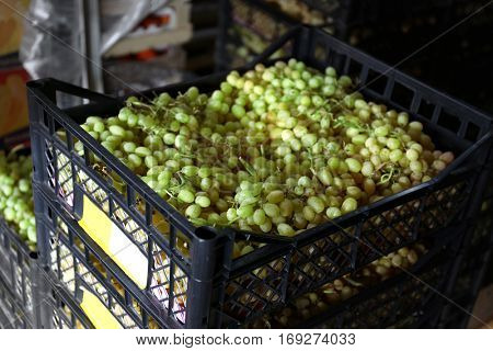 Fresh grapes in plastic crate on market, closeup