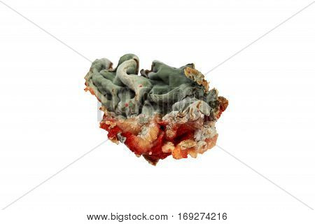 the green mold on a white background