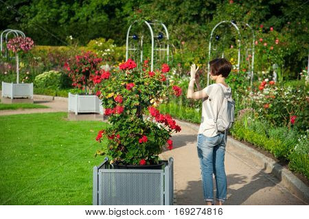Girl taking a photo of flowers in a beautiful garden