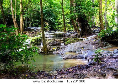 Forest Erawan green and fresh with tree in Kanchanaburi Thailand