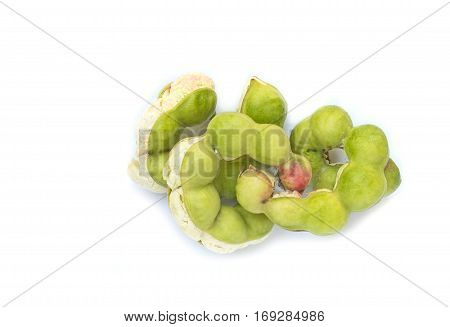 Top view Pithecellobium dulce isolated on white background