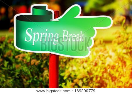 Green signpost with the text spring break written in it sunny spring day.
