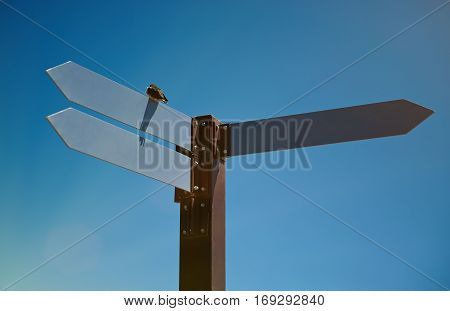 Signpost with three arrows on blue sky background. Closeup of crossroad sign