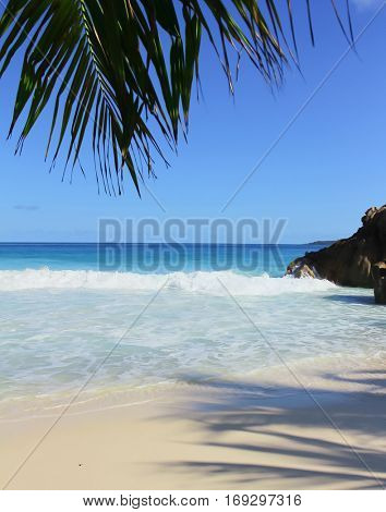 Surf Overhanging Exotic