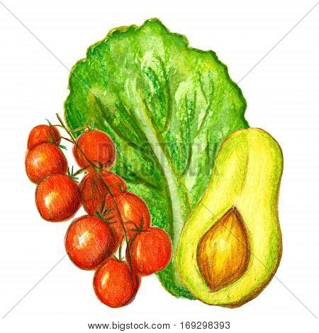 Raster vivid set of watercolor and pencil ingredients for salads, sauces and munches - avocado, cherry tomatoes and lettuce. Food, catering, healthy lifestyle themes, illustration for recipe sources.