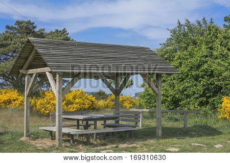 Picnic Area in Biosphere Reserve on Ruegen Island,baltic Sea,Mecklenburg western Pomerania,Germany