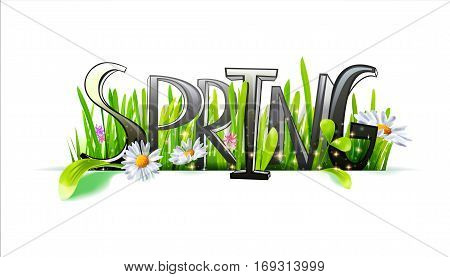 Spring word. Letters made with camomile flowers and green grass on white background. Floral banner. Vector illustration