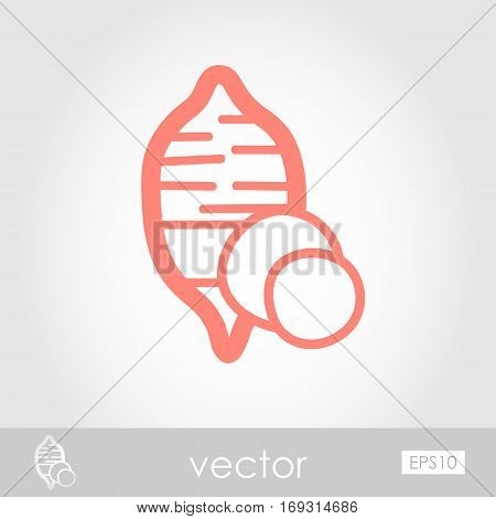Sweet potato outline icon. Batata. Vegetable vector illustration