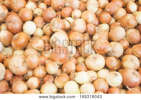 Onion harvest.Fresh golden onions. Onions background. Ripe onions. Onions in market.top view
