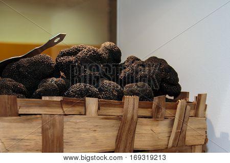 Black Truffles Tuber, Expensive Rare Mushroom Vegetable