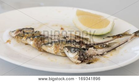 A plate of Spanish, grilled Sardines, eaten apart from the heads and the tails, with a wedge of Lemon