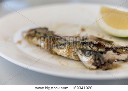 Plate on a table with Spanish grilled sardines, eaten apart form the head, focus on the eyes