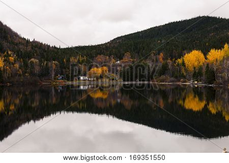 Autumn foliage in boreal forest on a calm day with orange and yellow trees reflected in a pond in Newfoundland and Labrador, Canada.