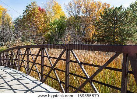 A Bridge Over Marsh Grass in Park