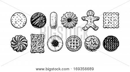 Set of different tasty cookies in old fashioned etched style. Black and white isolated on white.