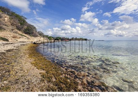 Clear ocean water of the Jan Thiel bay on Curacao