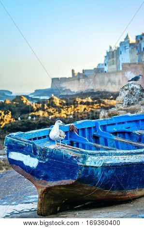 View to Essaouira fortified city and blue boat on beach. Atmospheric image in evening light with sunset color in the sky. Seaport town on the Atlantic Coast.