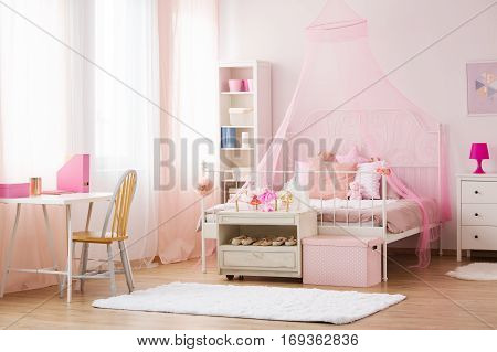 Girl Bedroom With Canopy Bed