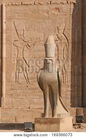 Horus the falcon God statue in Edfu Temple in Egypt