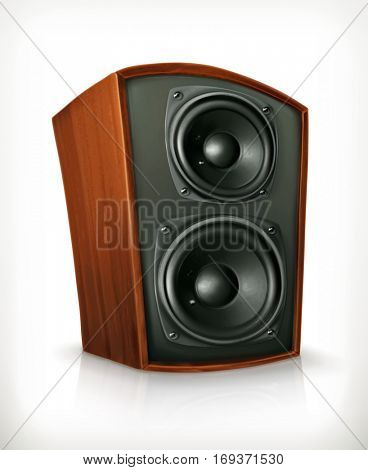 Audio speakers in plane wooden body, icon. Raster copy