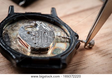 Parts Of Watch
