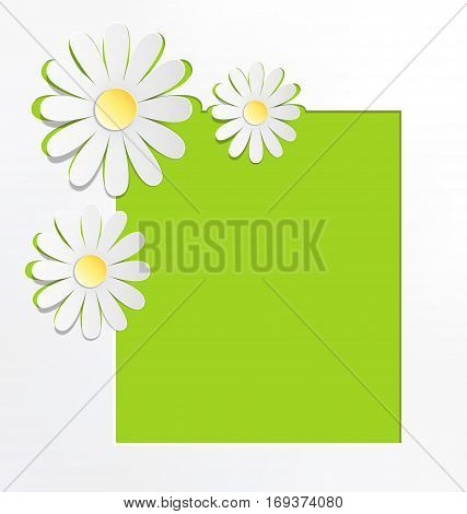 Three cutout chamomiles with frame on grayscale. Floral spring abstract background