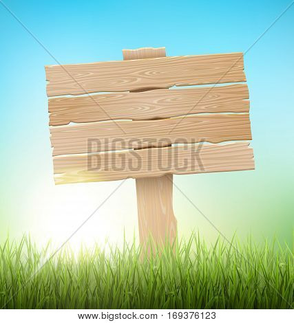 Green Grass Lawn with Signpost and Sunrise on Blue Sky. Floral Nature Spring Background
