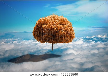 Trees in the clouds. Lonely tree growing on the meadow from the clouds. ecological concept. photo manipulation.