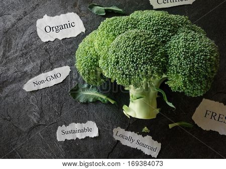 Fresh broccoli with organic non GMO related labels