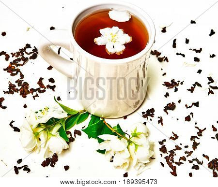Tea Cup With Dried And Fresh Fragrant Jasmine Flowers